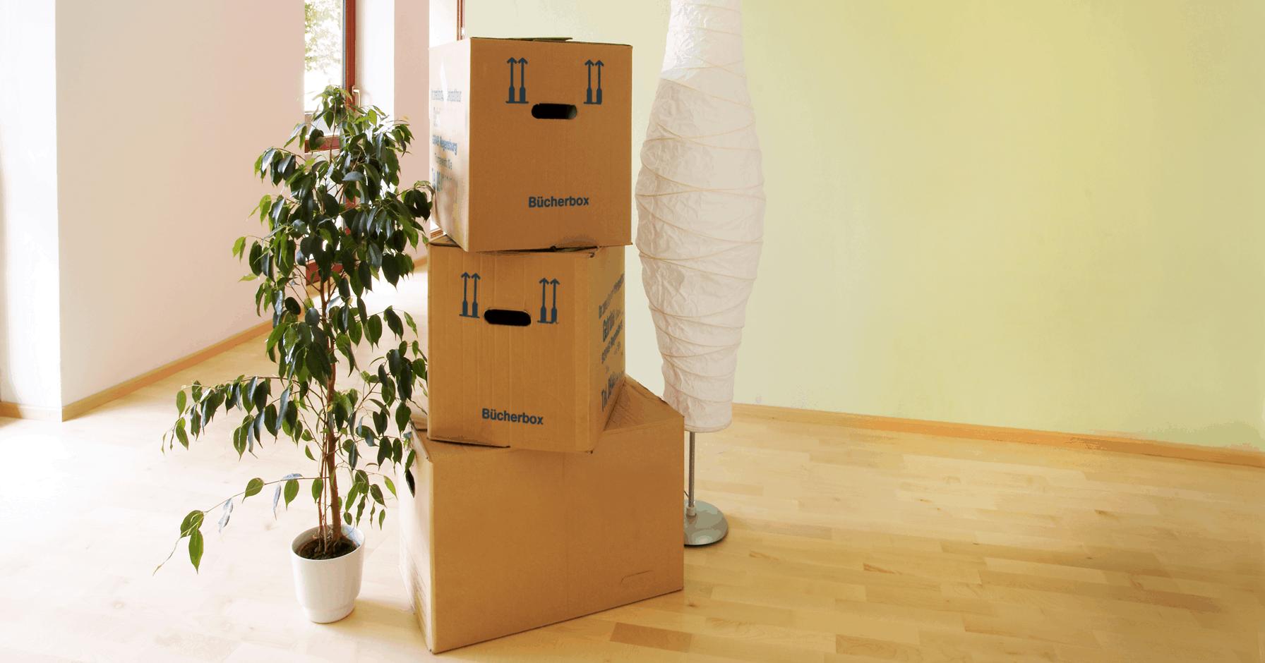 Wohnung Vermieten Was Sie Als Vermieter Wissen Mussen