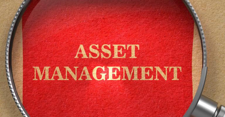 asset management immobilien