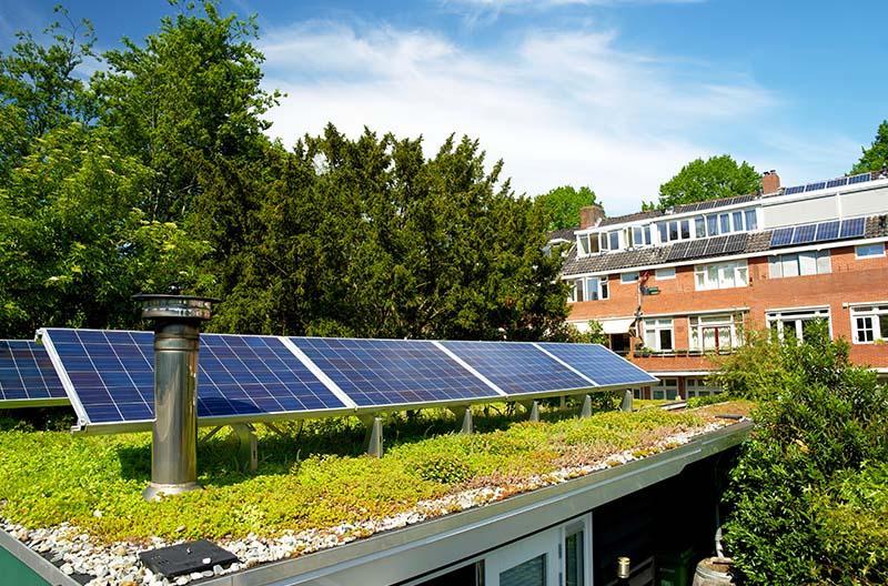 Gründach und Fotovoltaik